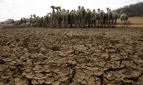 Une des principales sources d'eau dans la région de Moyales - photo Sarah Elliott/EPA