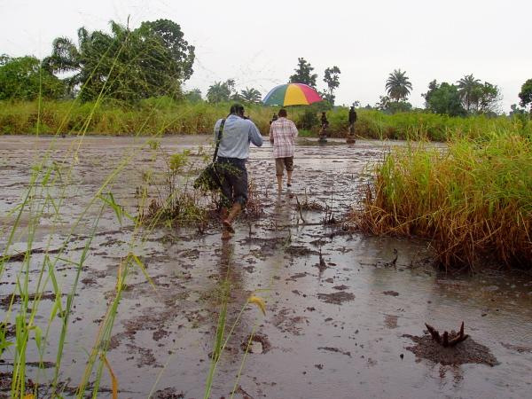 Dommages environnementaux en pays Ogoni (Photo IRIN).